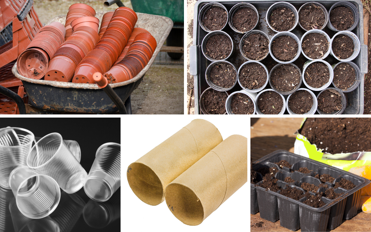 grid of five images of things to plant seeds in