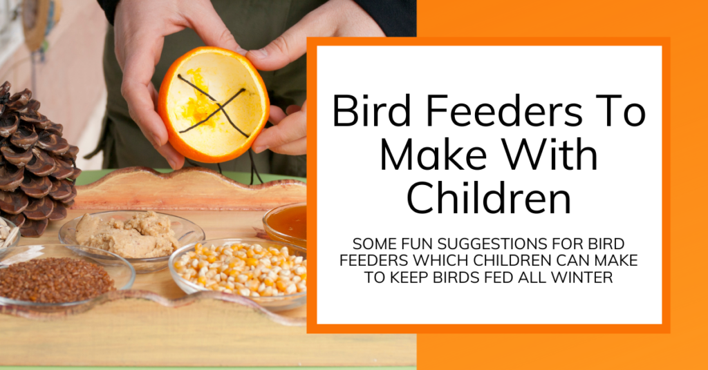 Cover Image for ideas to make bird feeders with kids