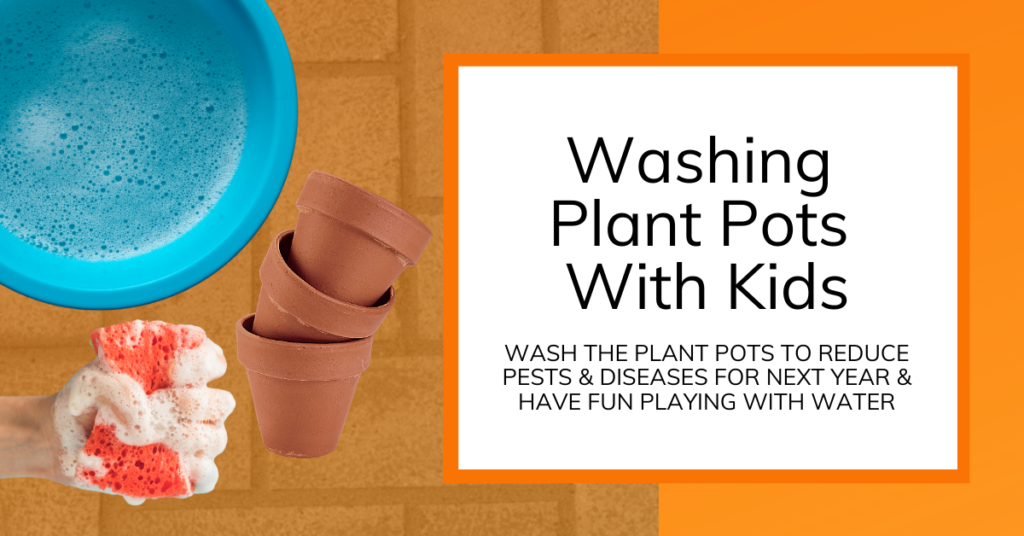 cover image for article about washing plant pots with kids
