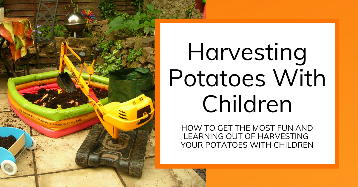 title image for harvesting potatoes with kids showing a paddling pool and construction toys