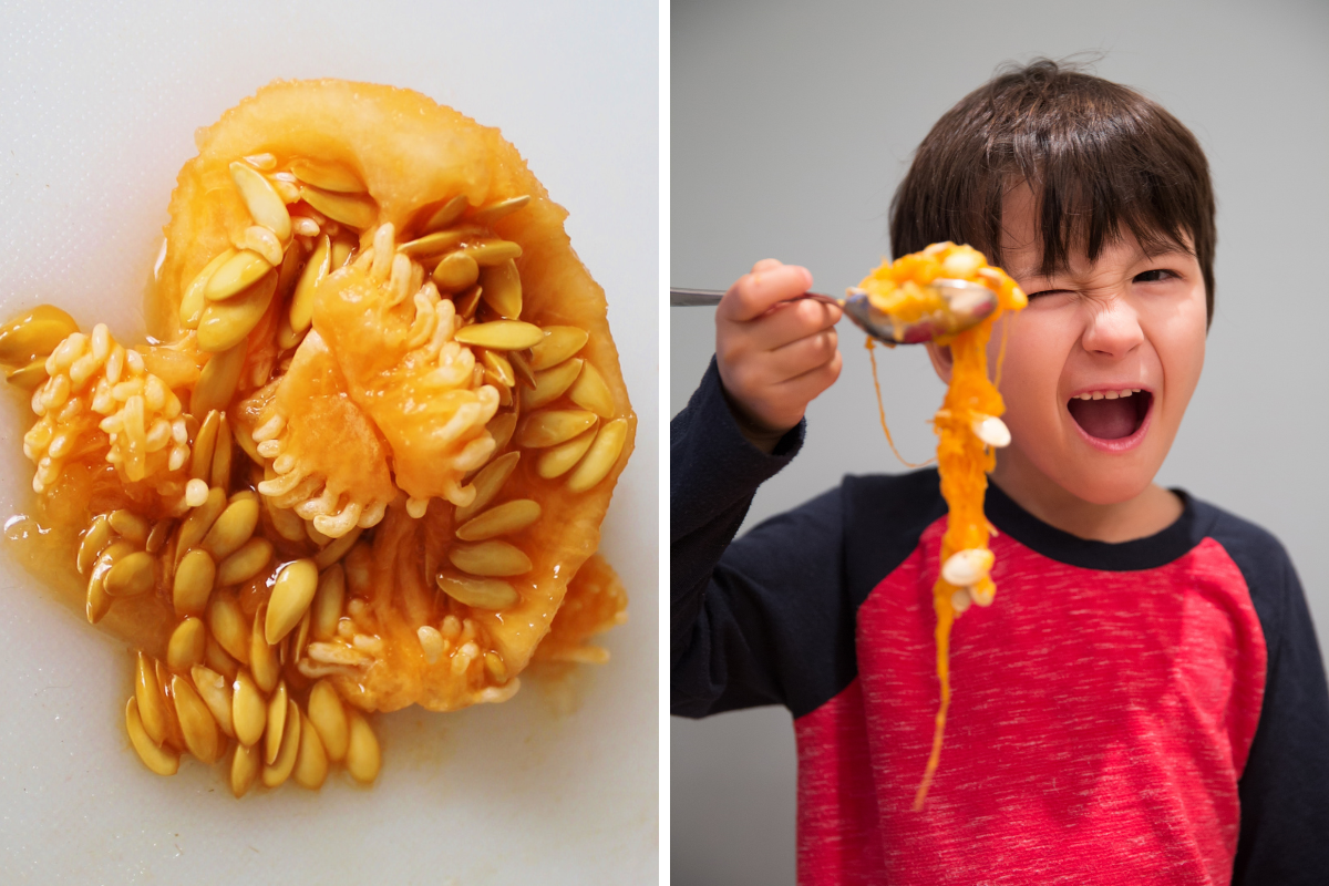 two images, one of pumpkin pulp and seeds, the other of a child squealing with horror at a spoonful of slimy pumpkin pulp they have carved